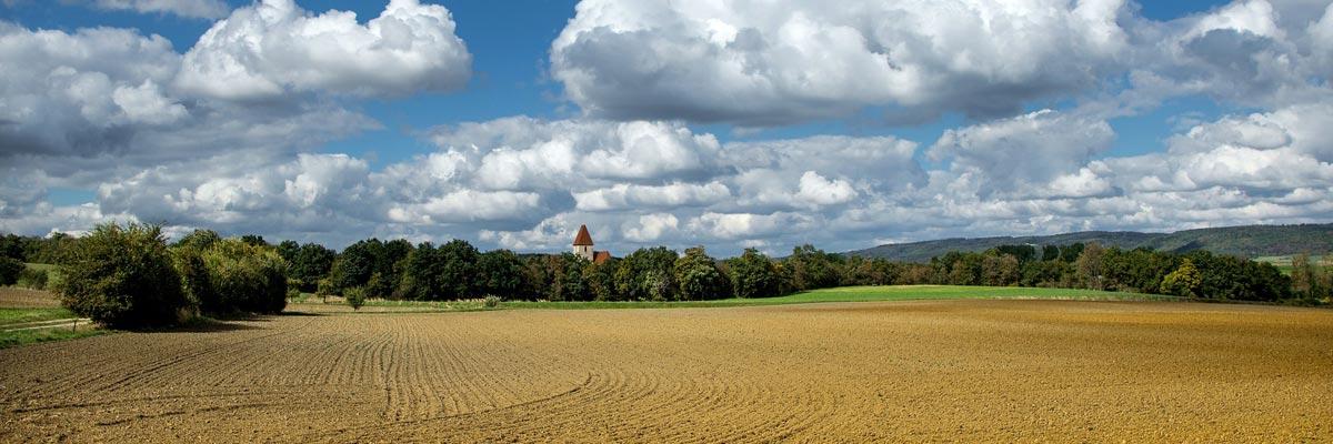 Ein landwirtschaftliches Feld in Österreich