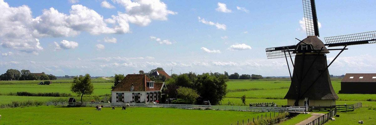 Windmolen en plattelandshuisje in Nederland met zeer groen gras