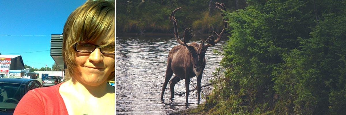 Silvanna in Kanada und ein Elch an einem Fluss