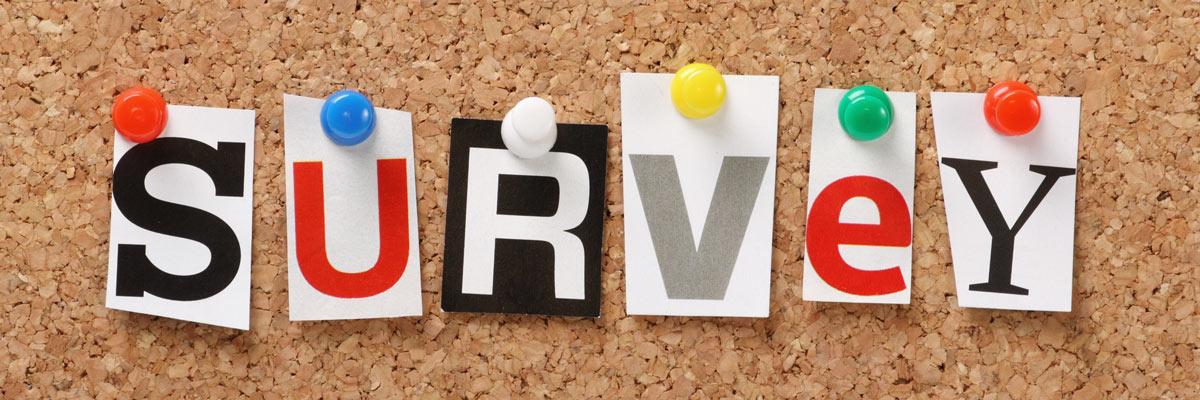 """Buchstaben auf einer Pinnwand bilden das Wort """"SURVEY"""""""