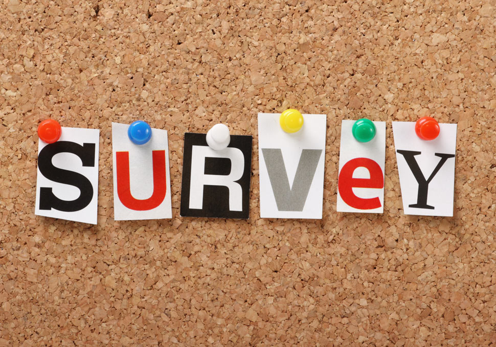 "The word ""SURVEY"" spelled out in letters pinned to a bulletin board."