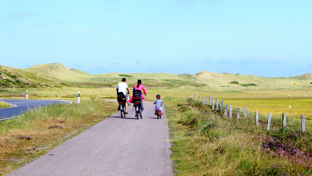 A family group bicycling at the north sea