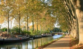 Carretera en un parque en Toulouse